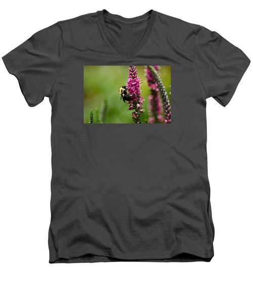 Bee Heaven Men's V-Neck T-Shirt