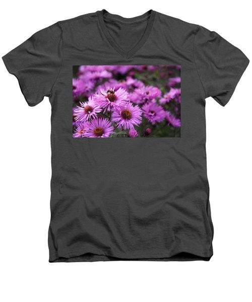 Bee On A Daisy Men's V-Neck T-Shirt