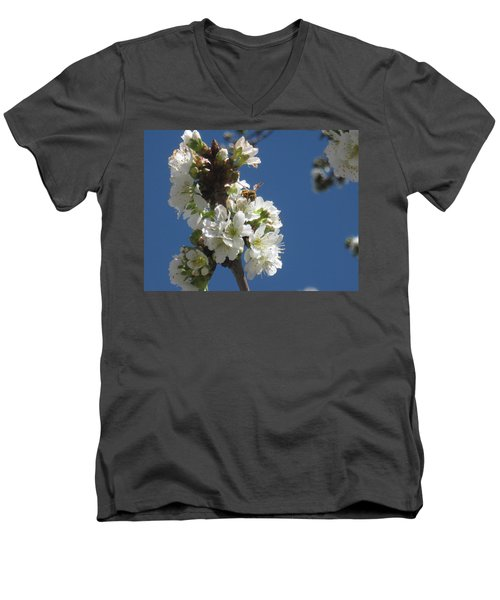 Bee On Cherry Blossoms Men's V-Neck T-Shirt