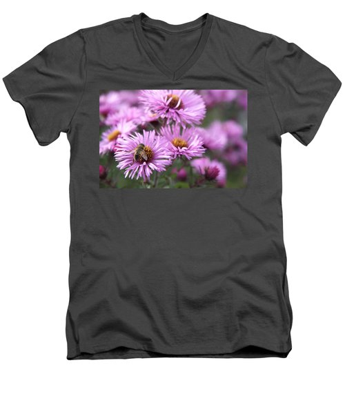 Bee On Daisy Men's V-Neck T-Shirt
