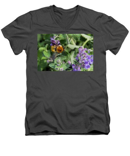 Men's V-Neck T-Shirt featuring the photograph Bee Too by David Gleeson