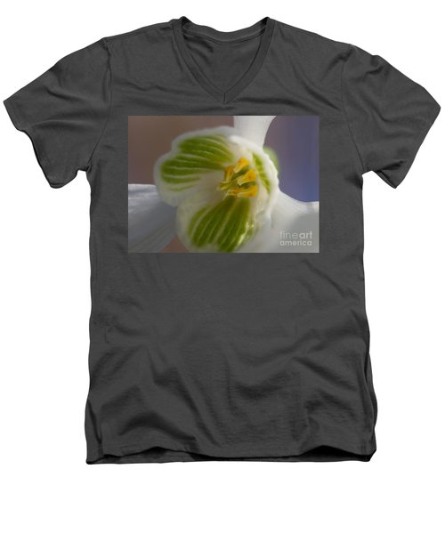 Bee's View Of A Snowdrop Men's V-Neck T-Shirt