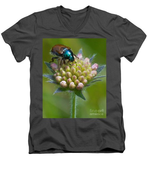 Men's V-Neck T-Shirt featuring the photograph Beetle Sitting On Flower by John Wadleigh