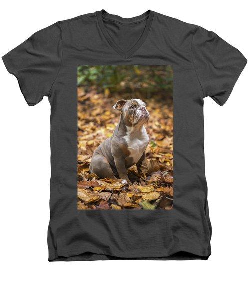 Bella Men's V-Neck T-Shirt