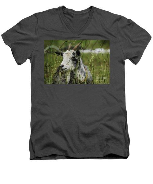 Betsy Men's V-Neck T-Shirt by Mary Carol Story