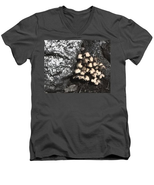 Between The Rocks Men's V-Neck T-Shirt