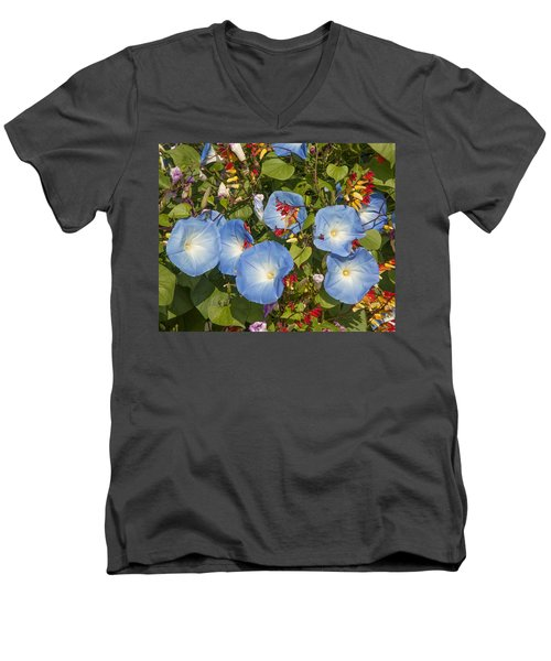 Bhubing Palace Gardens Morning Glory Dthcm0433 Men's V-Neck T-Shirt