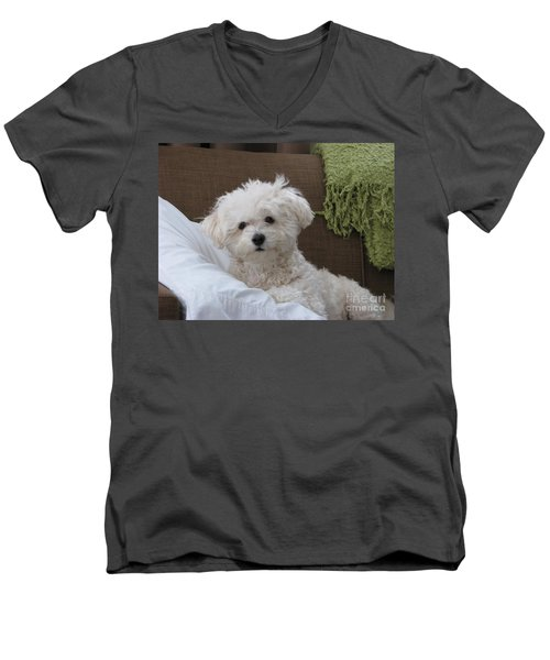 Molly 2 Men's V-Neck T-Shirt