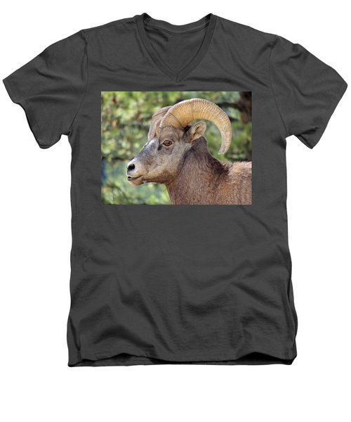 Men's V-Neck T-Shirt featuring the photograph Big Horn by Lynn Sprowl