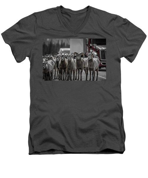 Big Horn Sheep Road Block Men's V-Neck T-Shirt