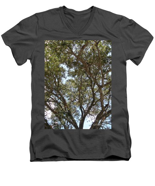 Big Oak Tree Men's V-Neck T-Shirt by Joseph Baril