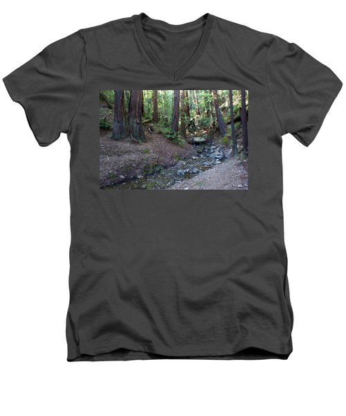 Bigfoot On Mt. Tamalpais Men's V-Neck T-Shirt