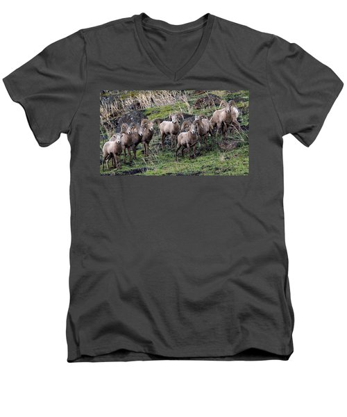 Bighorn Reunion Men's V-Neck T-Shirt