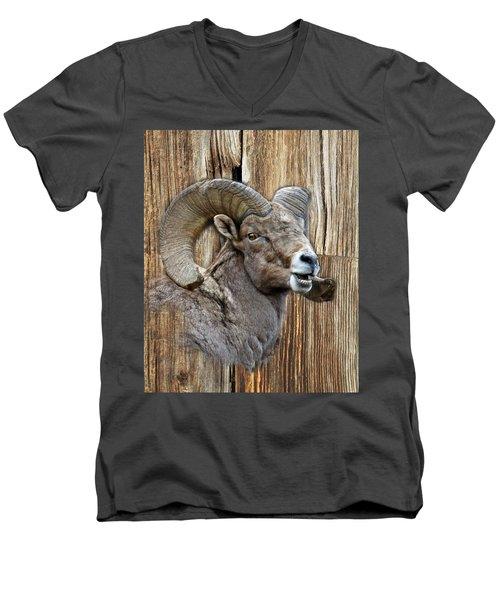 Bighorn Sheep Barnwood Men's V-Neck T-Shirt by Steve McKinzie
