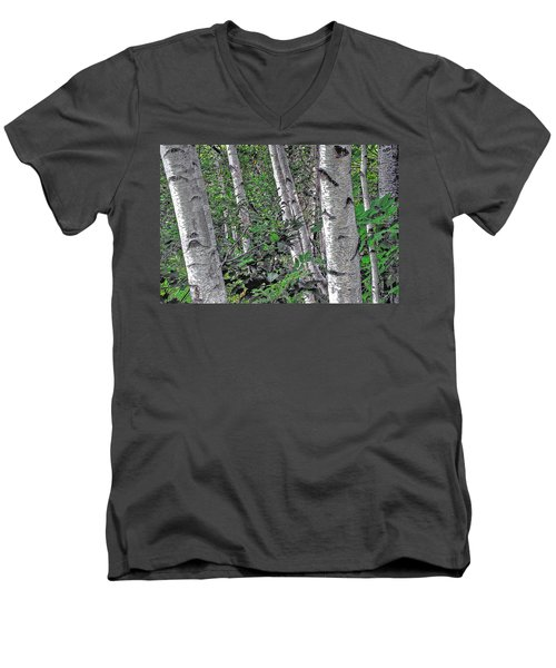 Birches Men's V-Neck T-Shirt