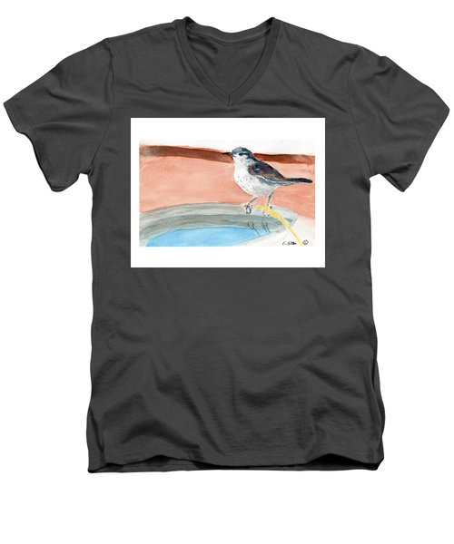 Bird Bath Men's V-Neck T-Shirt by C Sitton