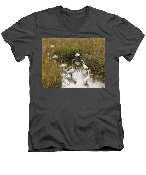 Bird Brunch Men's V-Neck T-Shirt