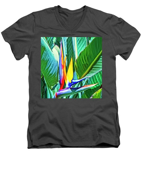 Bird Of Paradise Men's V-Neck T-Shirt by Dominic Piperata