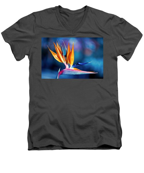 Bird Of Paradise Men's V-Neck T-Shirt