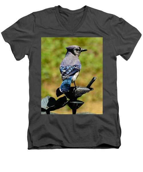 Bird On A Bird Men's V-Neck T-Shirt