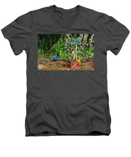 Birds Bathing Men's V-Neck T-Shirt