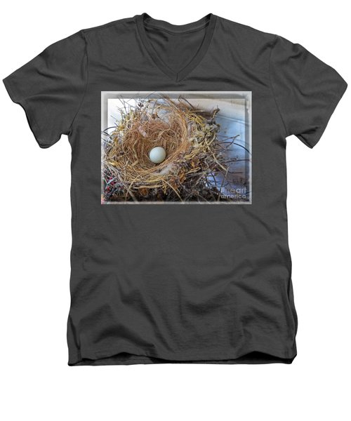 Birds Nest - Perfect Home Men's V-Neck T-Shirt by Ella Kaye Dickey