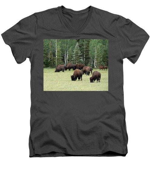 Bison At North Rim Men's V-Neck T-Shirt by Laurel Powell
