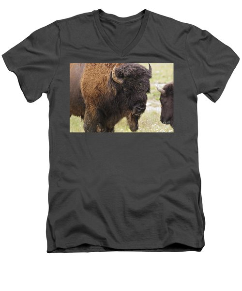 Bison From Yellowstone Men's V-Neck T-Shirt by Belinda Greb