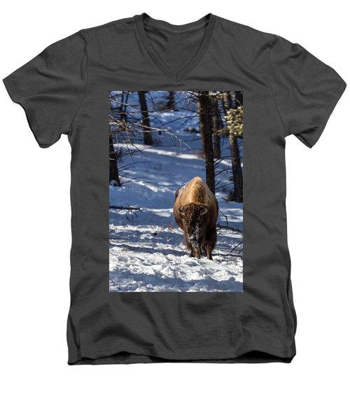 Bison In Winter Men's V-Neck T-Shirt