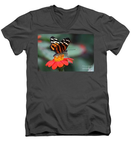 Black And Brown Butterfly On A Red Flower Men's V-Neck T-Shirt
