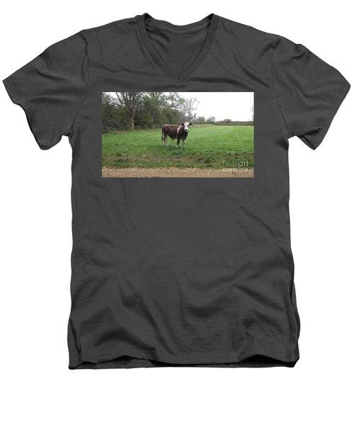 Black And White Bull Men's V-Neck T-Shirt by John Williams
