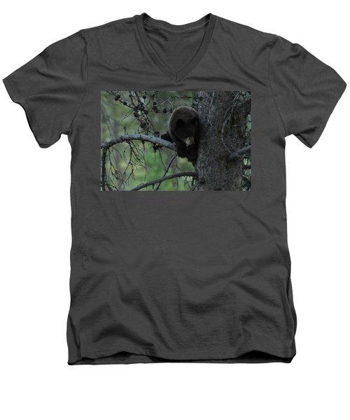 Black Bear Cub In Tree Men's V-Neck T-Shirt