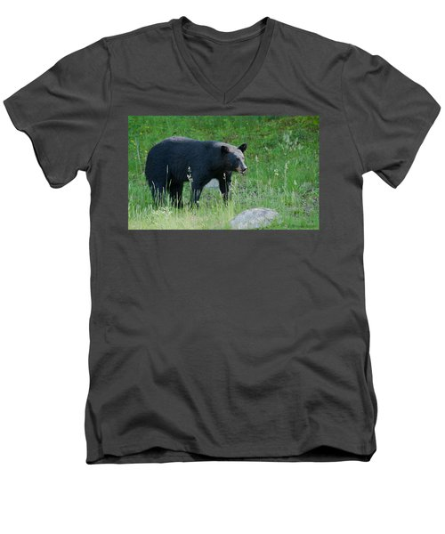 Black Bear Female Men's V-Neck T-Shirt