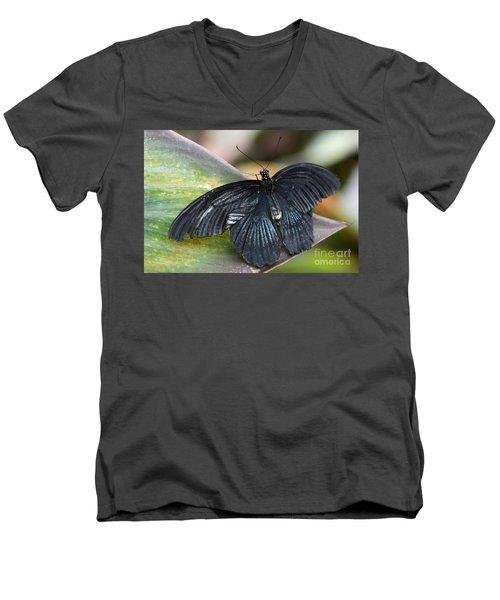 Black Butterfly Men's V-Neck T-Shirt