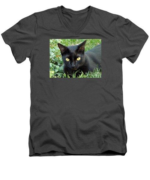 Black Cat Men's V-Neck T-Shirt