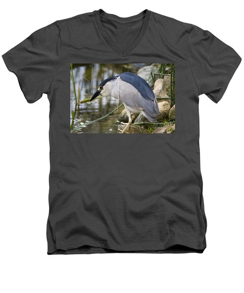 Black-crown Heron Going Fishing Men's V-Neck T-Shirt by David Millenheft