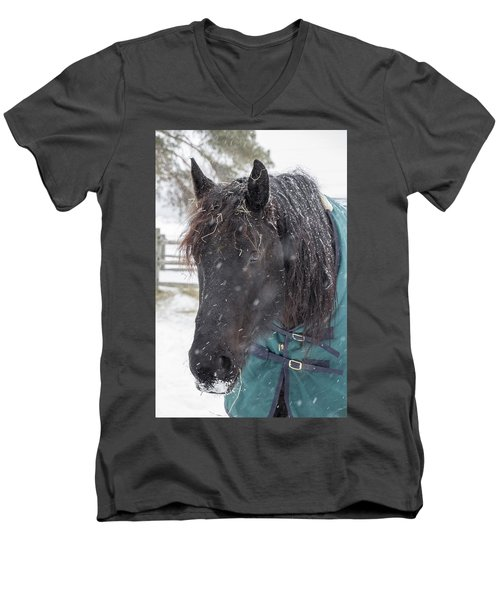 Black Horse In Snow Men's V-Neck T-Shirt