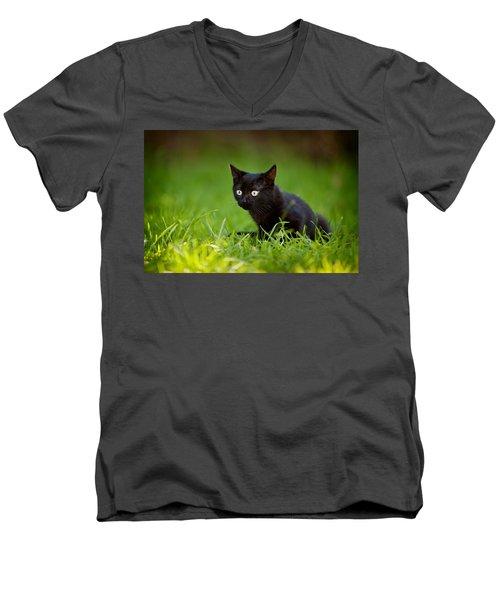 Black Kitten Men's V-Neck T-Shirt