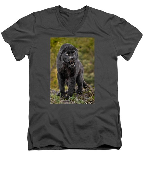 Black Panther Men's V-Neck T-Shirt by Jerry Fornarotto