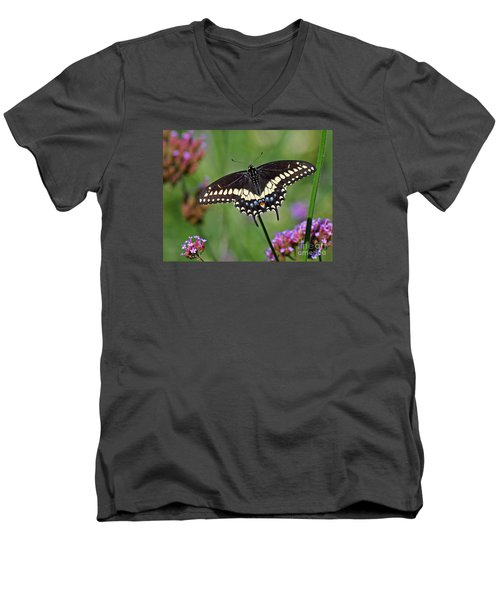 Black Swallowtail Butterfly  Men's V-Neck T-Shirt