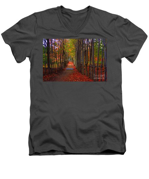 Blanket Of Red Leaves Men's V-Neck T-Shirt