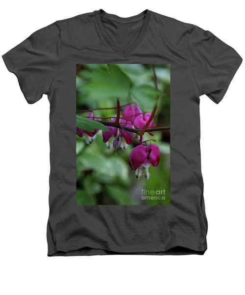 Men's V-Neck T-Shirt featuring the photograph Bleeding Heart by Linda Shafer