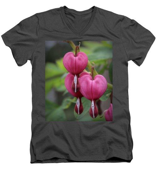 Bleeding Hearts Men's V-Neck T-Shirt by Joseph Skompski