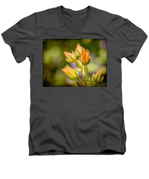 Blooming Succulents I Men's V-Neck T-Shirt