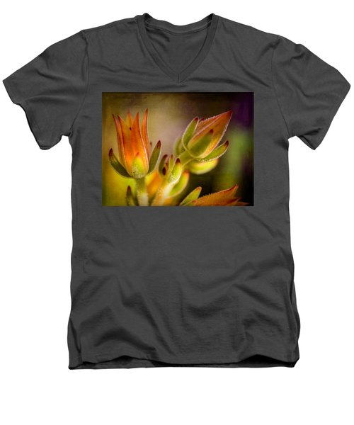 Blooming Succulents Iv Men's V-Neck T-Shirt