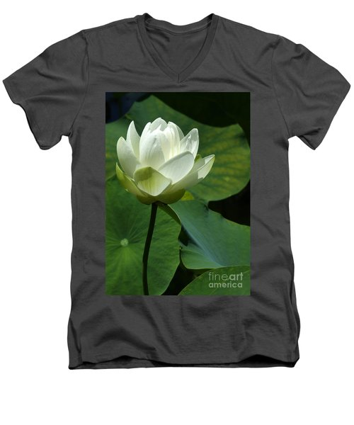 Blooming White Lotus Men's V-Neck T-Shirt