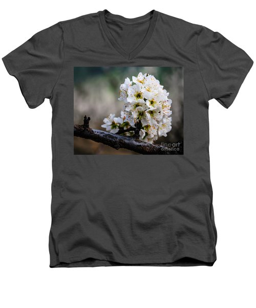 Blossom Gathering Men's V-Neck T-Shirt