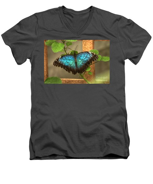 Blue And Black Butterfly Men's V-Neck T-Shirt