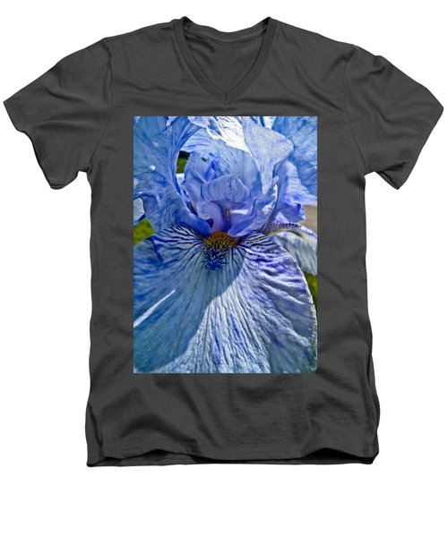 Blue Bearded Iris Men's V-Neck T-Shirt