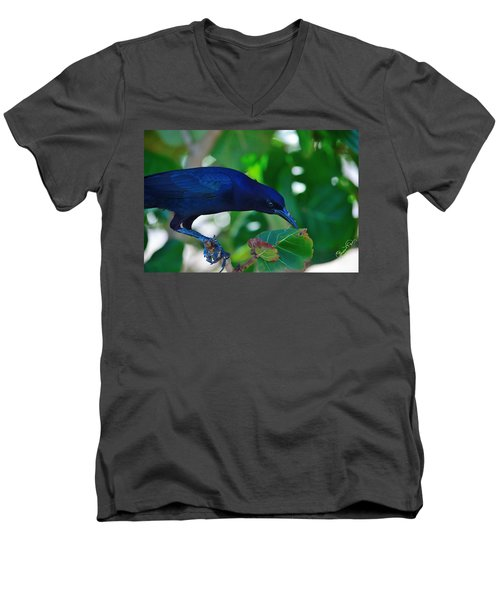 Blue-black Black Bird Men's V-Neck T-Shirt by Susan Molnar